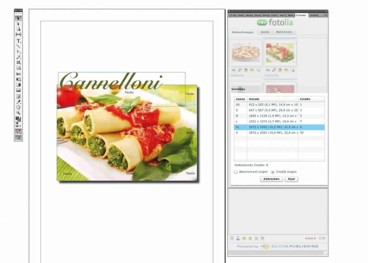 Fotolia veröffentlicht Adobe Creative Suite Plugin für Stock Fotos - Fotolia Adobe Plug in 1