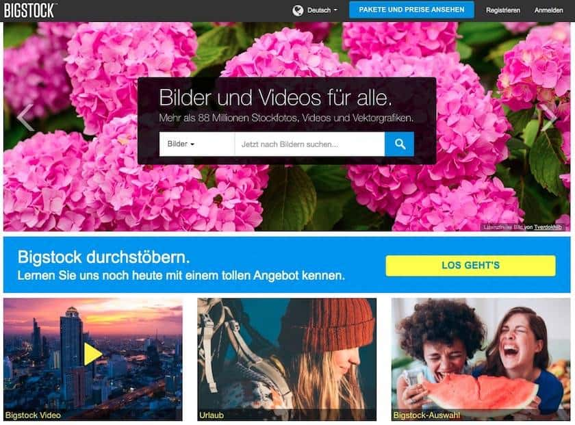Bigstock Webseite