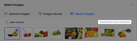 facebook-ad-shutterstock-suche