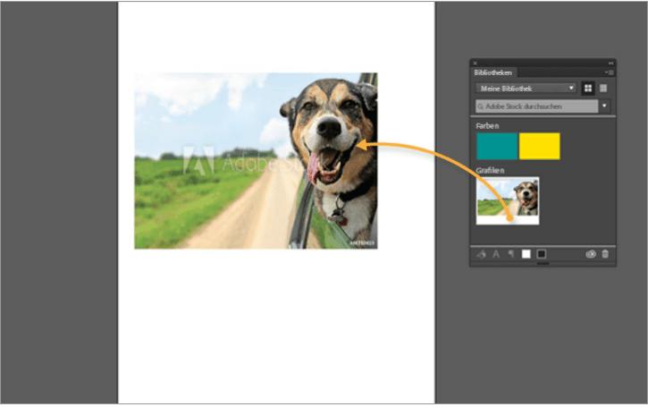 Adobe Stock - adobestock bild nach phtoshop