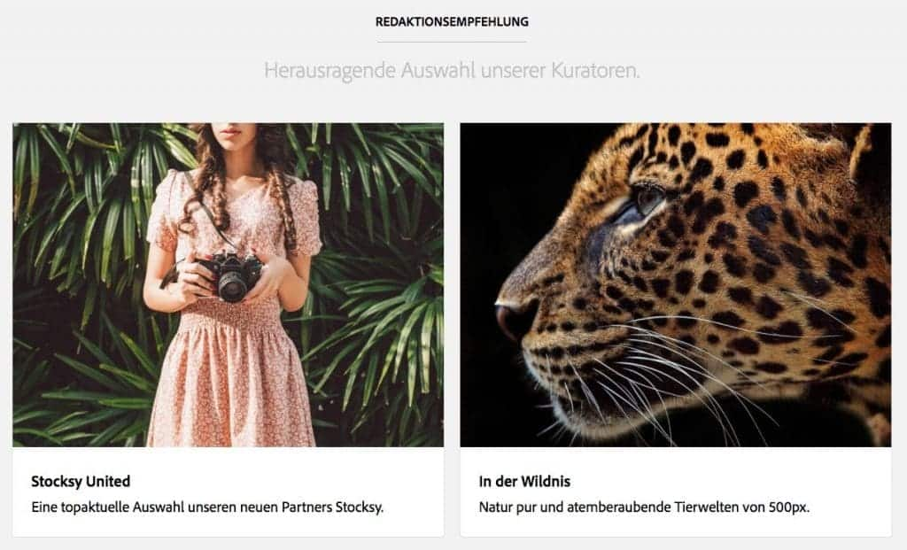Neue Editorial und Premium Collection bei Adobe Stock! - adobe premium