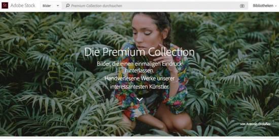 Die fünf besten Bildagenturen, um Premium Bilder zu kaufen! - fotoskaufen adobestock premium