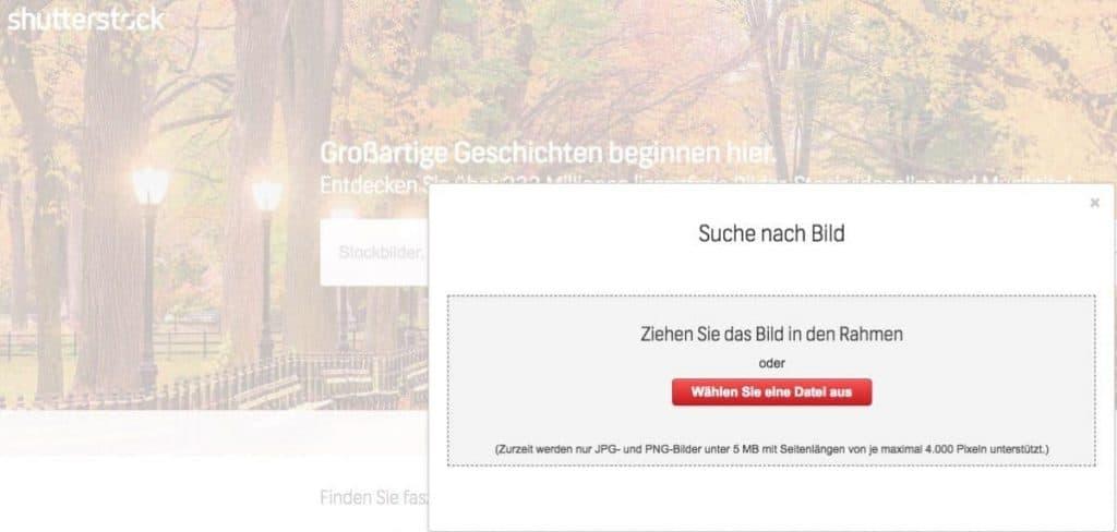 Shutterstock Testbericht, Preise & Erfahrungen - fotoskaufen shutterstock eigenes foto