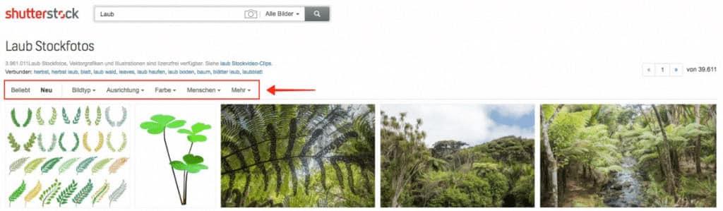 Shutterstock Testbericht, Preise & Erfahrungen - fotoskaufen shutterstock feine suchoptionen 1024x299 1