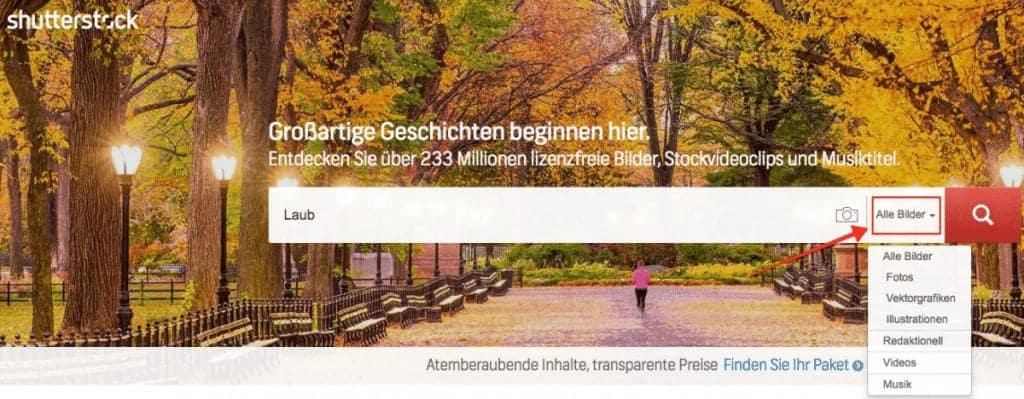 Shutterstock Testbericht, Preise & Erfahrungen - fotoskaufen shutterstock suchoption 1024x399 1
