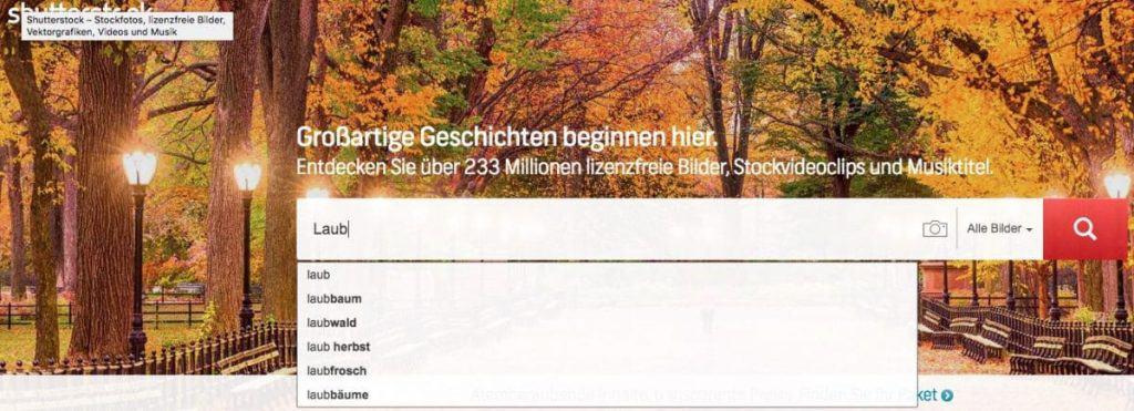 Shutterstock Testbericht, Preise & Erfahrungen - fotoskaufen shutterstock wortsuche