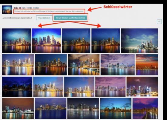 Bildsuche mit visuell ähnlichen Bildern und Schlüsselwörtern