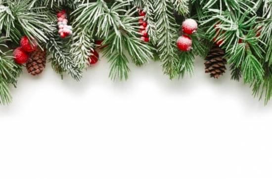 Die 60 meist heruntergeladenen Bilder 2018 von Top Bildagenturen im Vergleich! - fotoskaufen adobestock christmastree