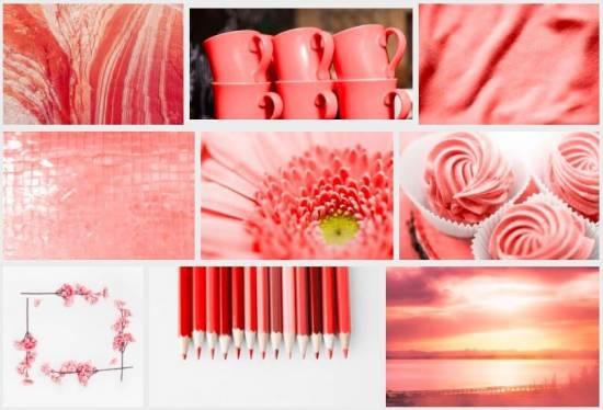 Fotografie-Trends 2019: 49 Top Bilder zeigen, was Trend ist! - adpic farbe coral