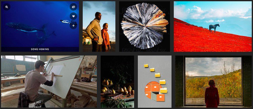 8 Bildagenturen, die Sie kennen sollten - fotoskaufen stocksy fotos